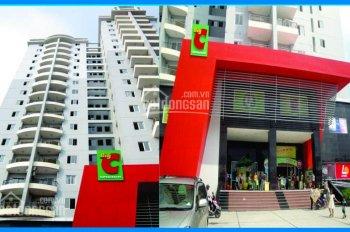 Bán căn hộ BigC Phú Thạnh, DT 110m2, 3PN, full nội thất, giá 2.15 tỷ, LH: 0902.456.404