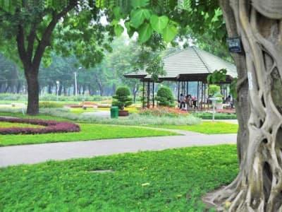 Vườn Dạo Bộ Và Thảm Cỏ Dưỡng Sinh